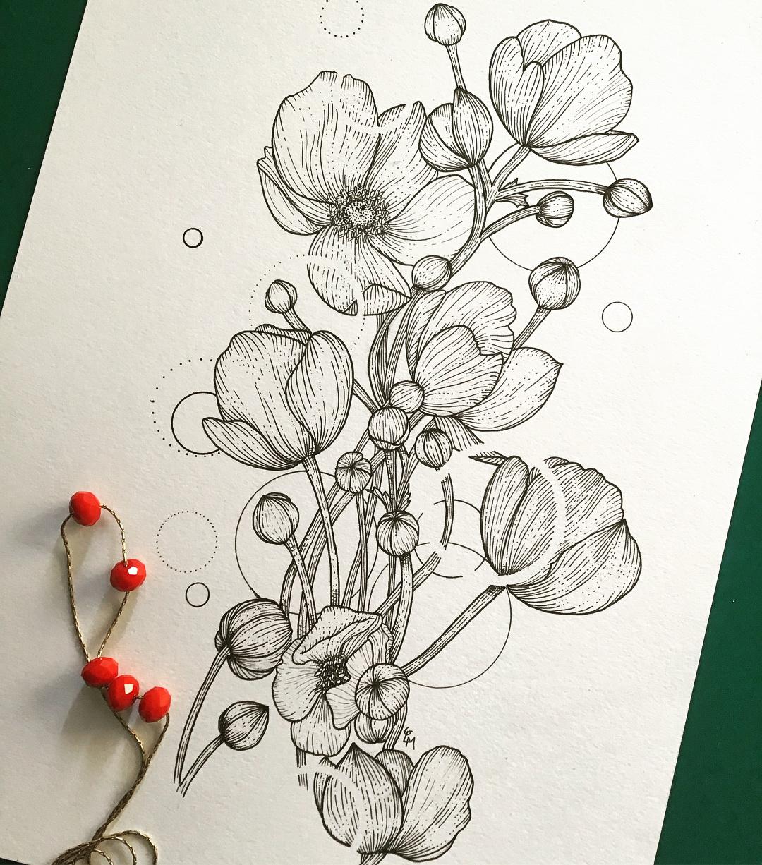 动物植物针管插画