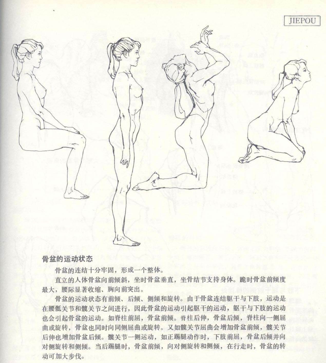 第1章:速写普及课  第3节:人体结构的基本框架比例及动态认识  【选修作业】