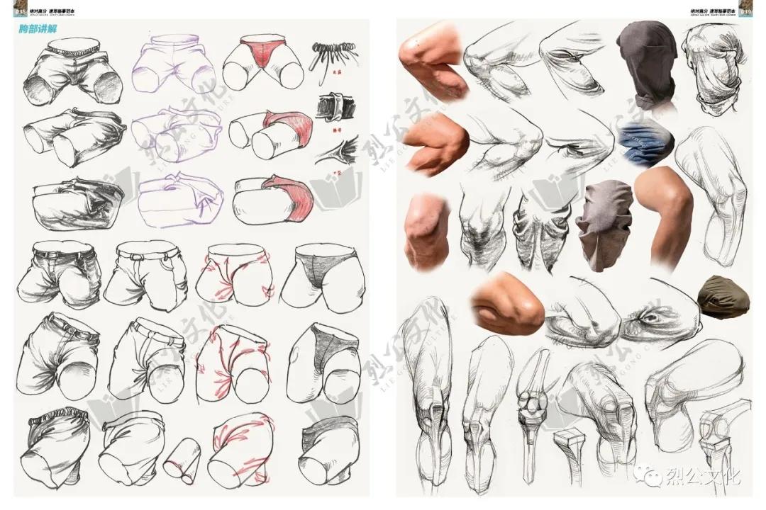 第1章:速写普及课  第4节:身体躯干的结构体面认识  【参考素材】
