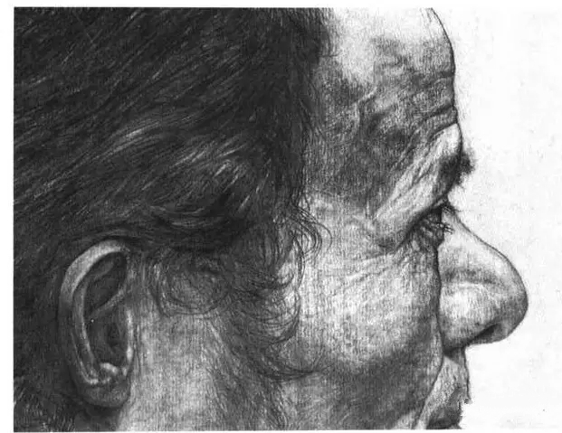 素描头像局部耳朵